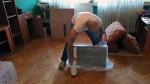 selidbe-pakovanje